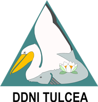 Logo DDNI_TL